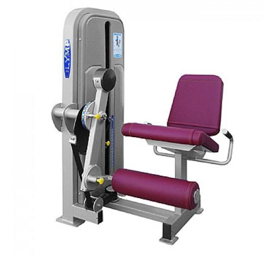 OLYMP Przyrząd do ćwiczeń mięśni czworogłowych uda siedząc